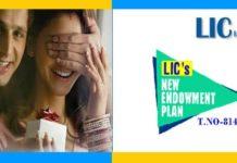 LIC New Endowment Plan